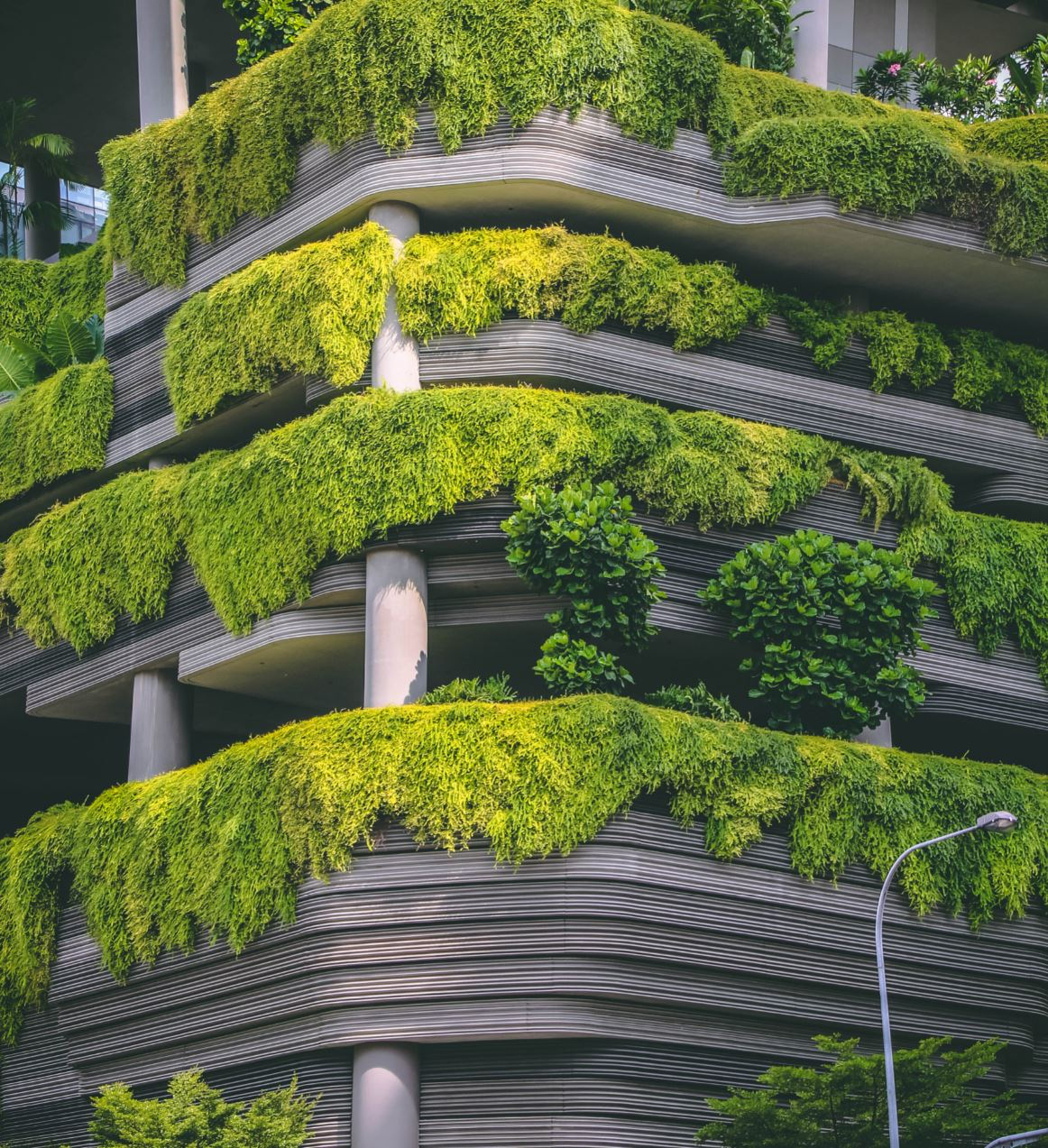 Parkroyal has been lauded for its unique 'hotel-in-a-garden' architecture. - Image Credit:  Victor Garcia via Unsplash