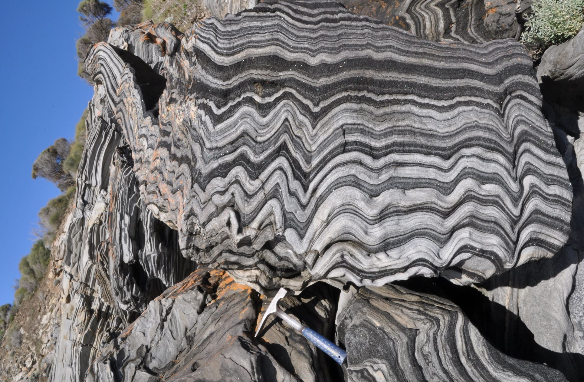 Photographed on Kangaroo Island, this rock – called a 'zebra schist' – deformed from flat-lying marine sediments through being stressed by a continental collision over 500 million years ago. - Image Credit:  Dietmar Down Under   via flickr