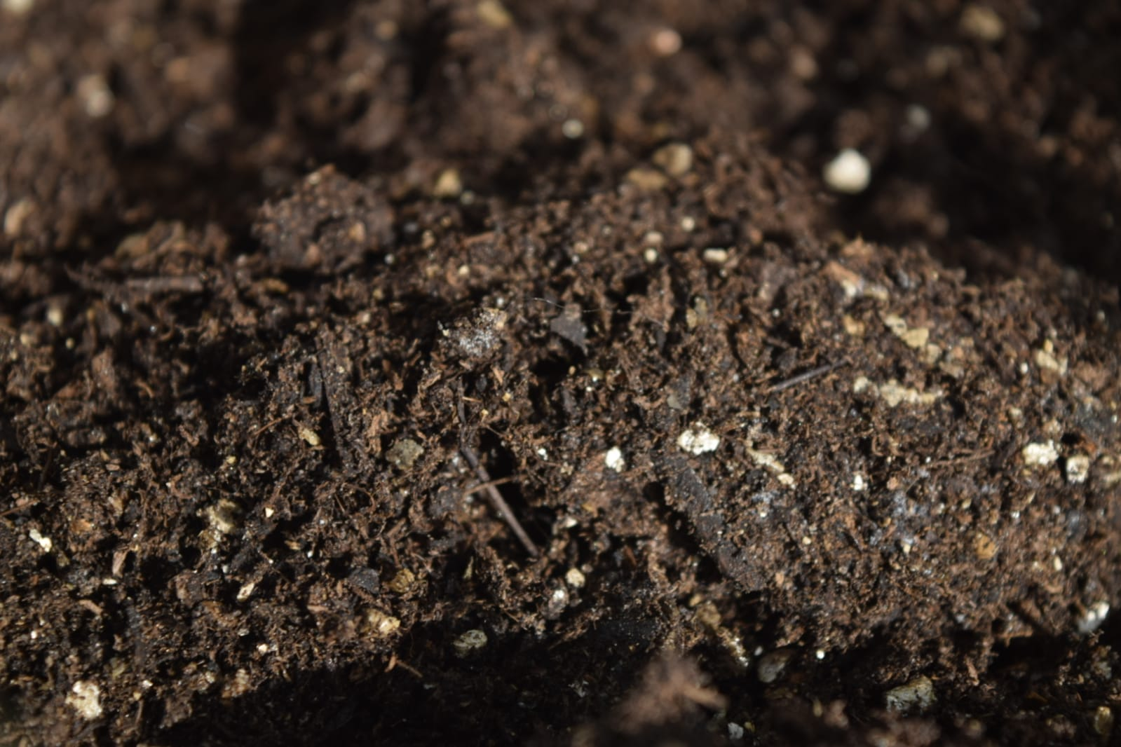 The memories retained by soil contain countless records, including a history of human encounters with the land. - Image Credit: C. Verhagen via Universal-Sci ( CC BY 2.0 )