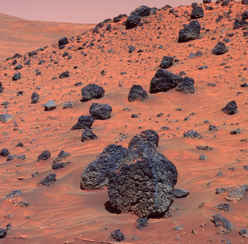 The surface of Mars should be kept pristine. - Image Credits:  NASA