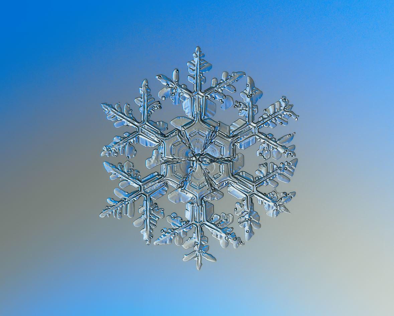 A Macro photography of natural snowflake - Image Credit:  Alexey Kljatov via Wikimedia Commons