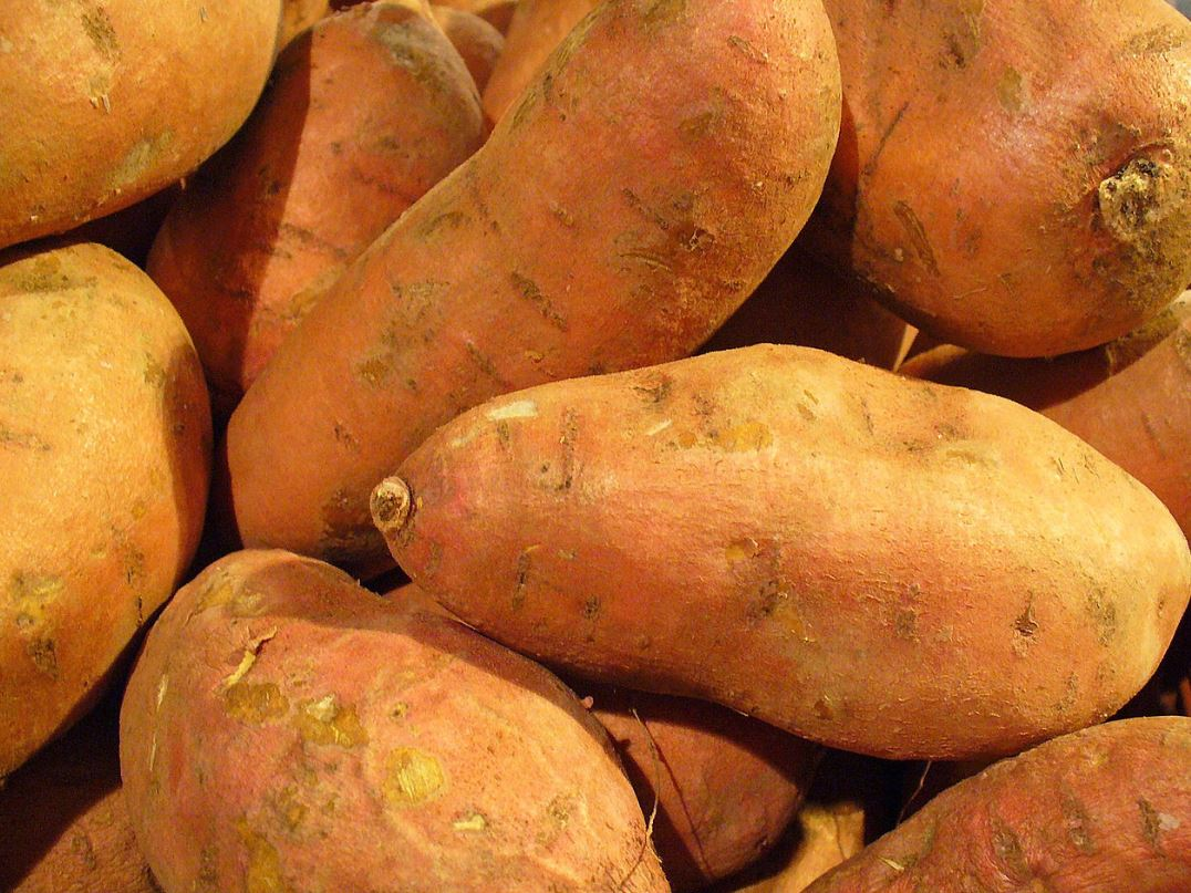 Sweet potatoes are a great source of vitamin A - Image Credit:  Llez via Wikimedia Commons