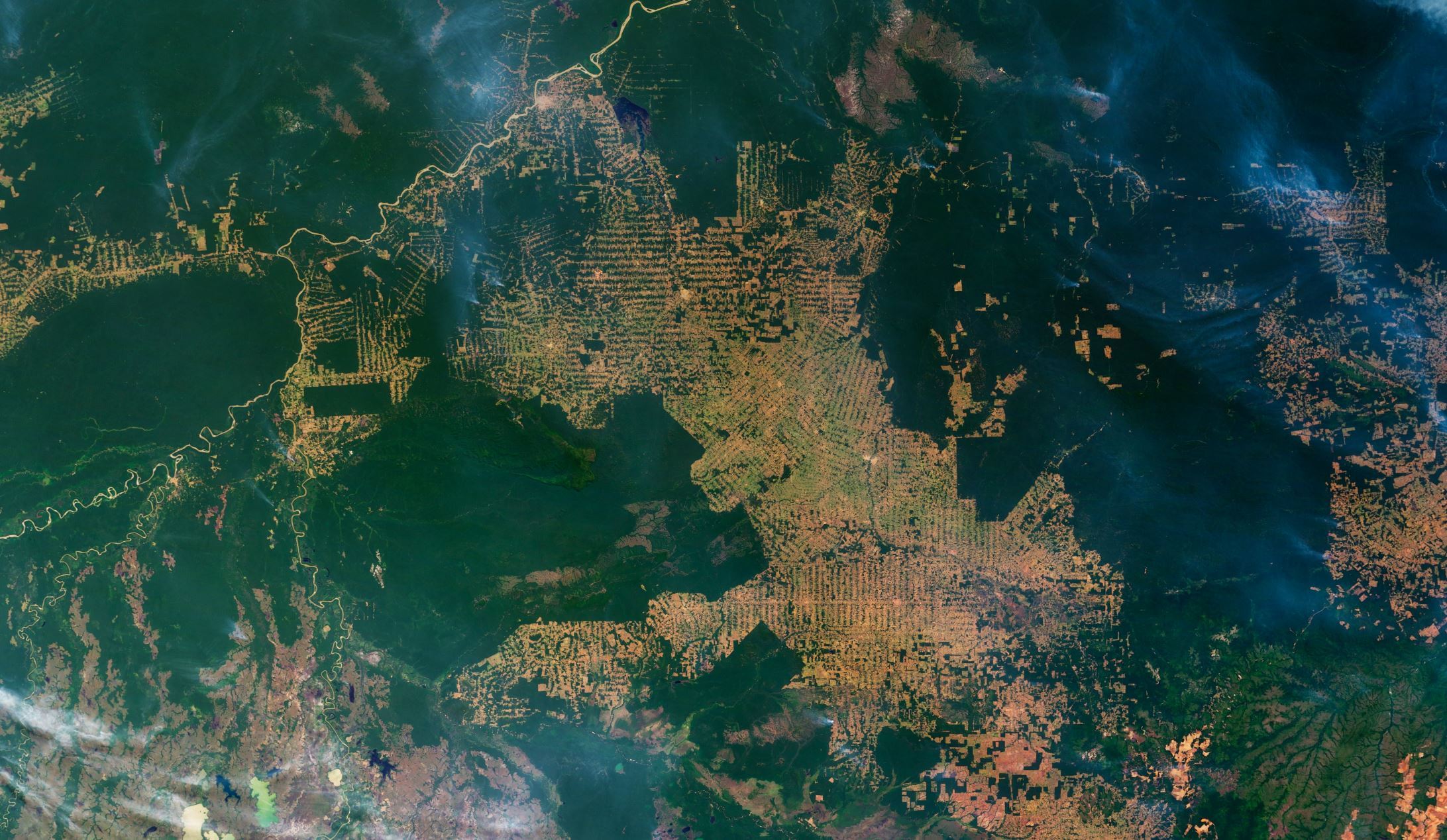 In this image, intact forest is deep green, while cleared areas are tan (bare ground) or light green (crops, pasture, or occasionally, second-growth forest). The fish bone pattern of small clearings along new roads is the beginning of one of the common deforestation trajectories in the Amazon. (2007 image) Image Credit:  NASA Earth Observatory via Wikimedia Commons  - HDR tune  Universal-Sci