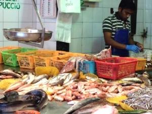 fish market array.jpg