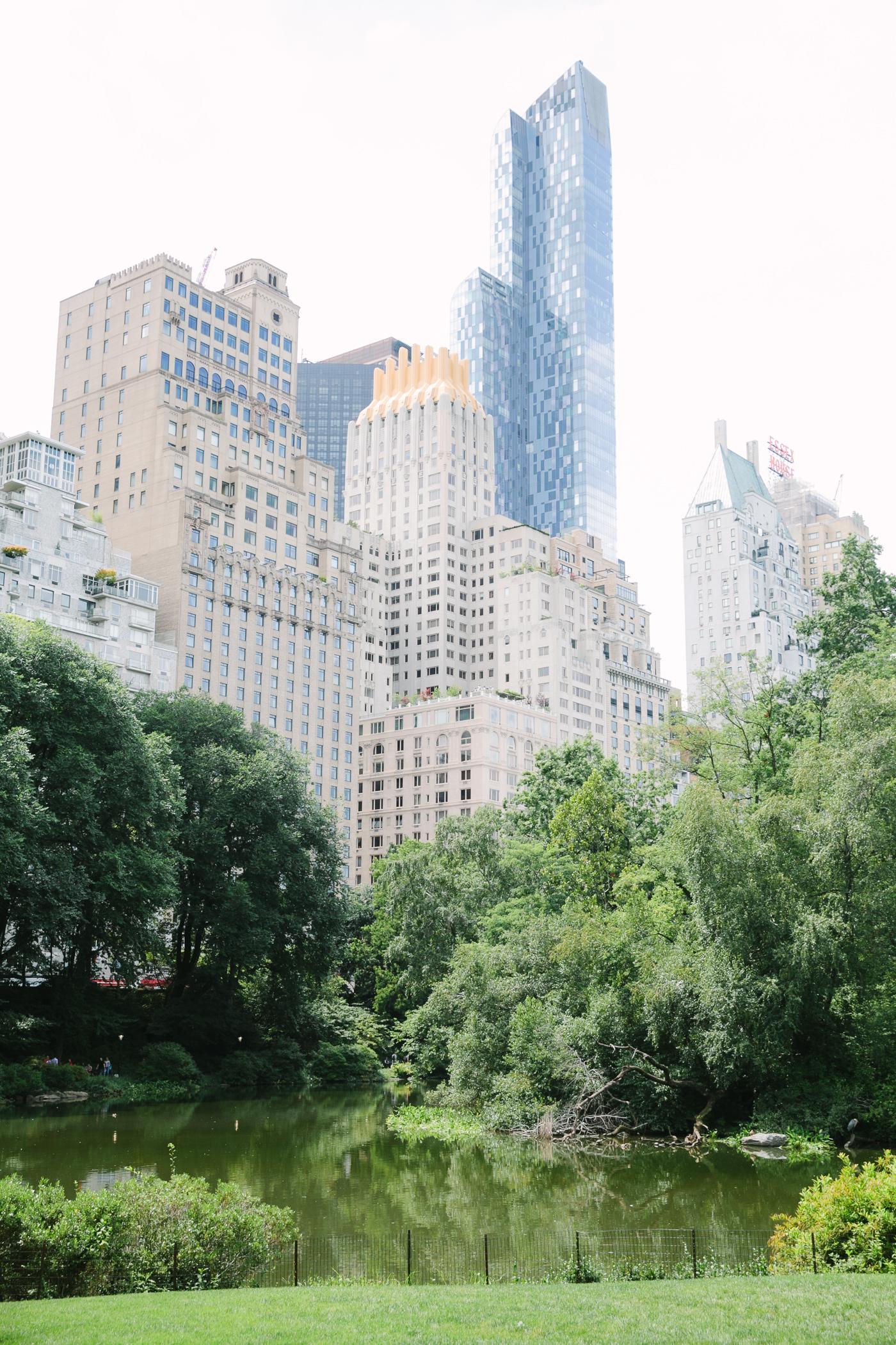 Central Park-Gapstow-bridge-wedding_H&K-164.jpg