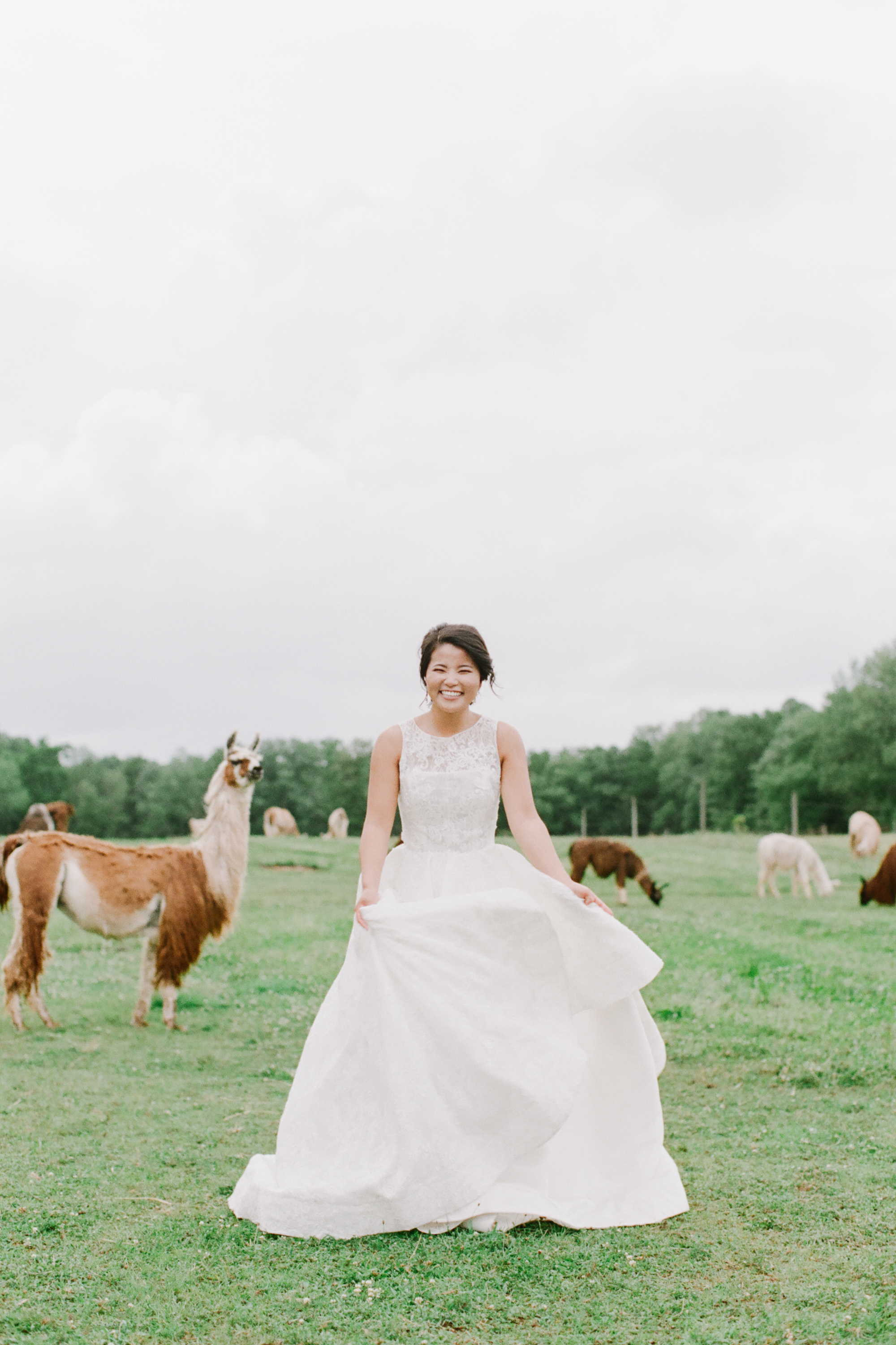 nj_alpaca-farm_wedding_inspiration-77.jpg
