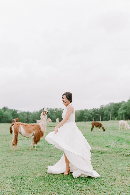 nj_alpaca-farm_wedding_inspiration-78.jpg