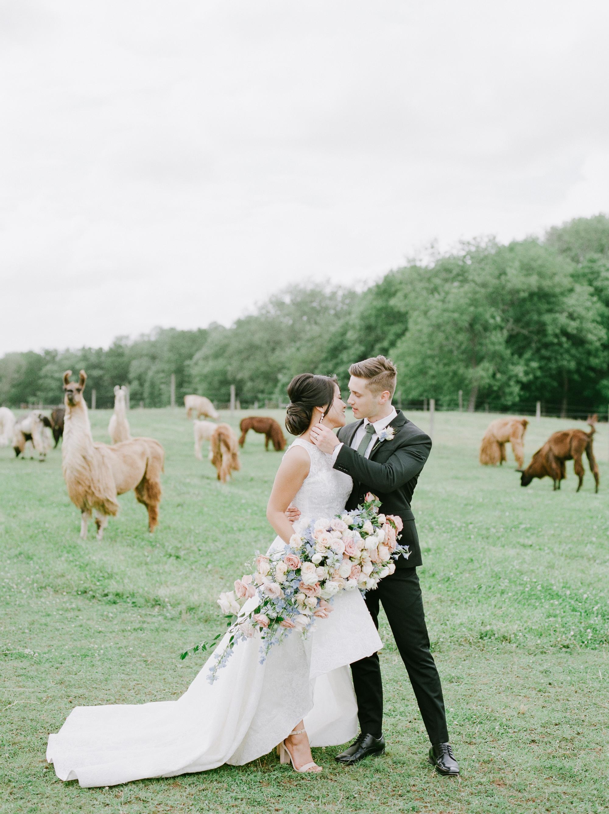 nj_alpaca-farm_wedding_inspiration-42.jpg