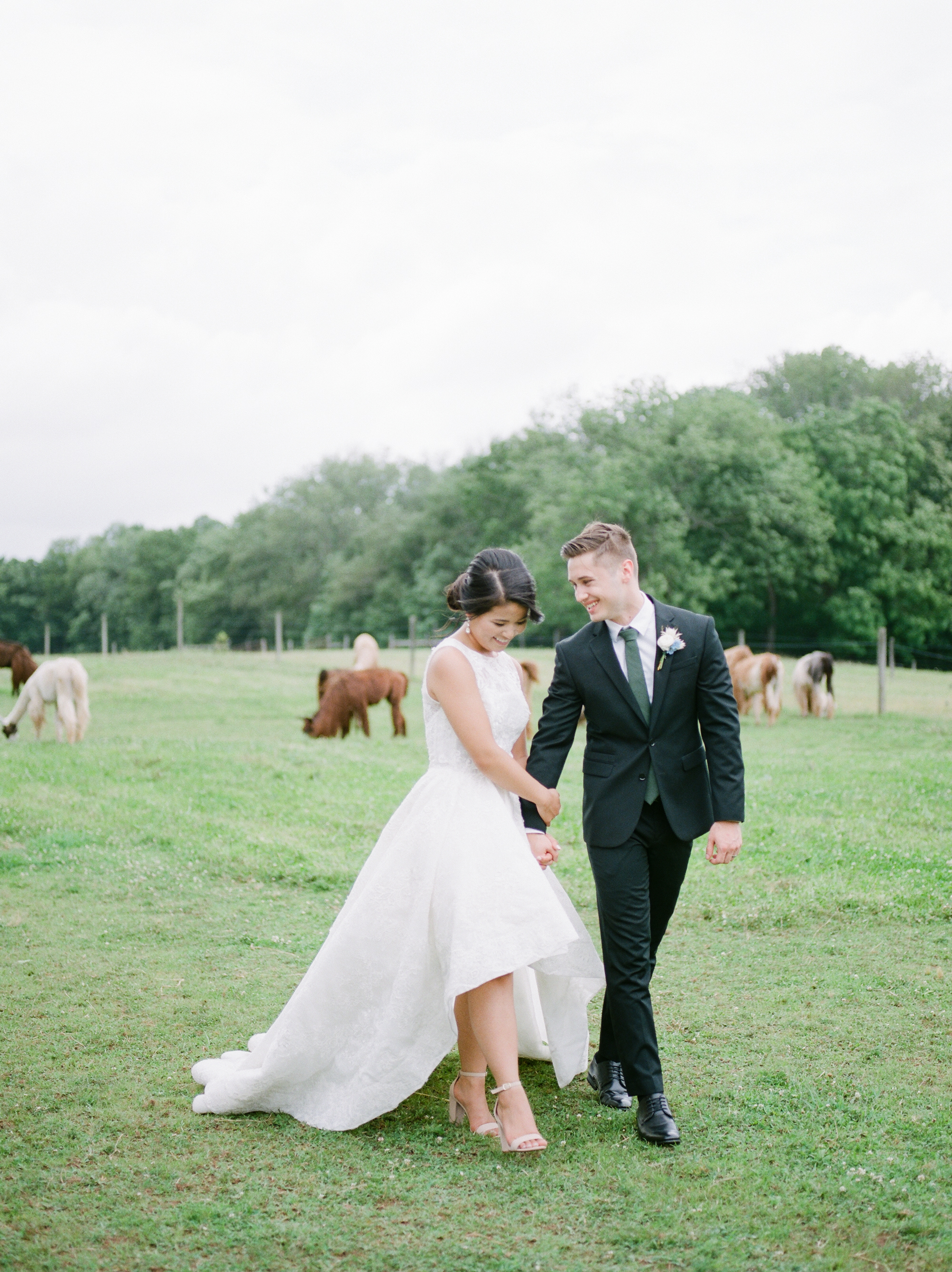 nj_alpaca-farm_wedding_inspiration-49.jpg