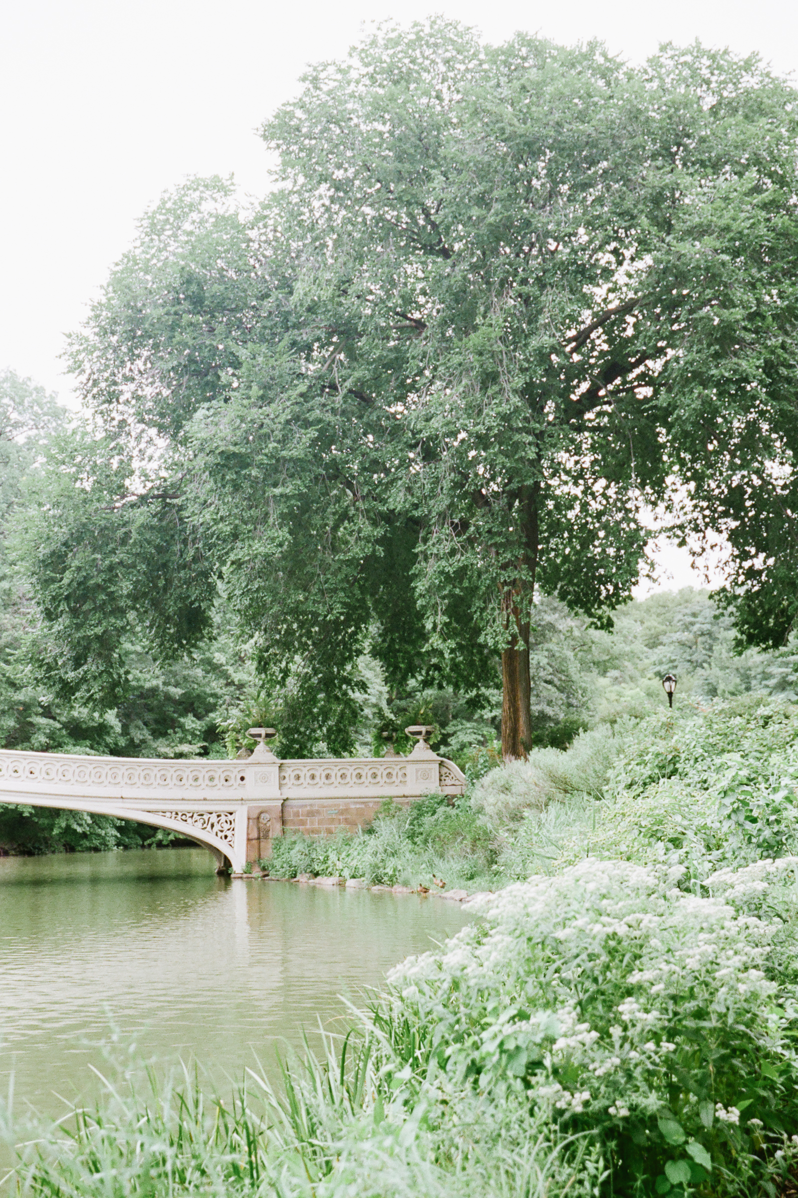 Central-Park-NYC-Engagement-Session-film-photography-16.jpg