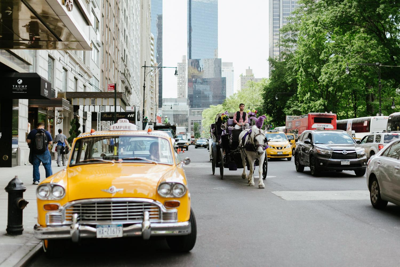 Central-park-cop-cot-wedding-A&M-78.jpg