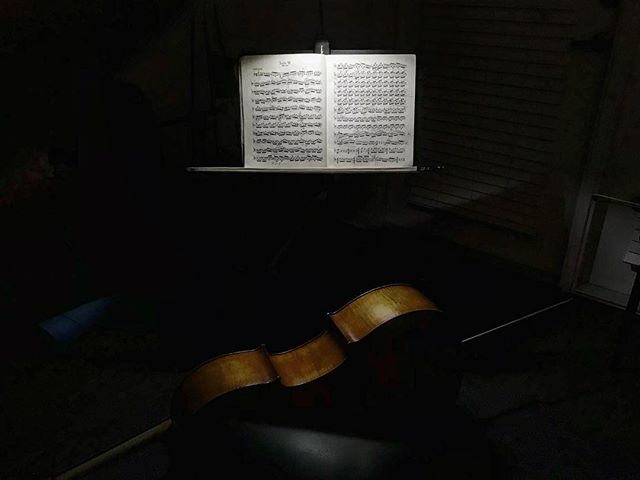 Anyone else like practicing in the dark?  #cello #cellist #practice #bach