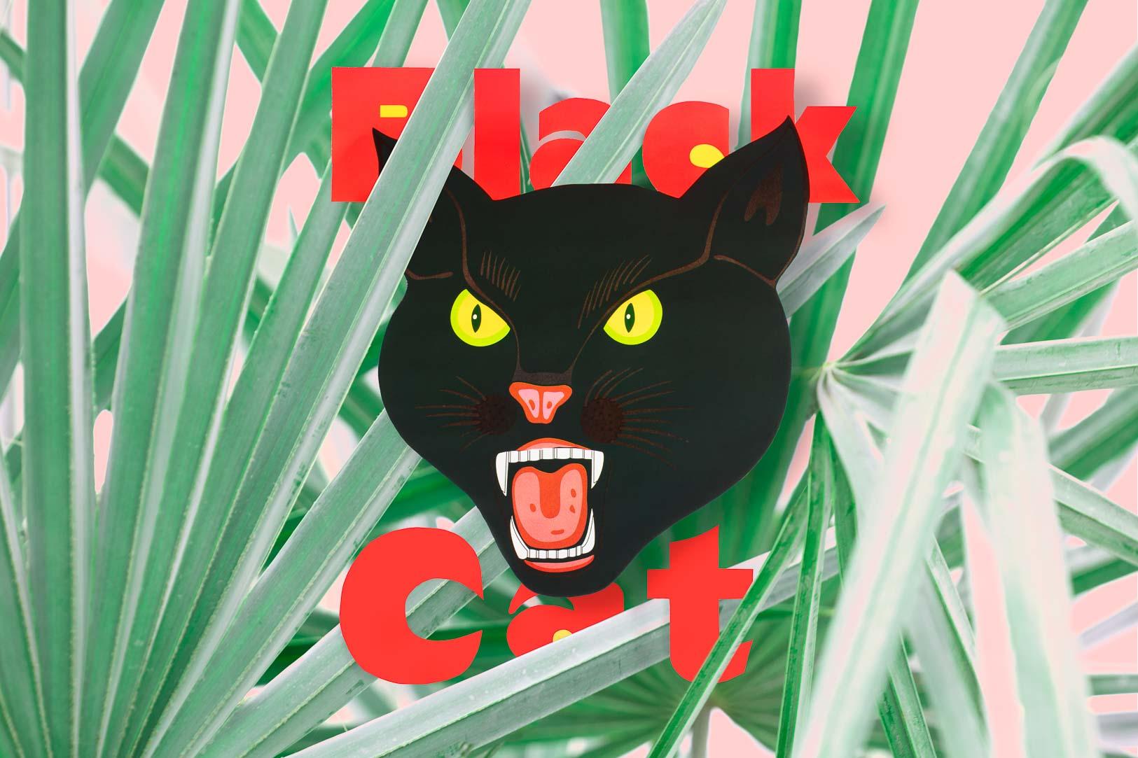 Eric Lubrick Black Cat.jpg