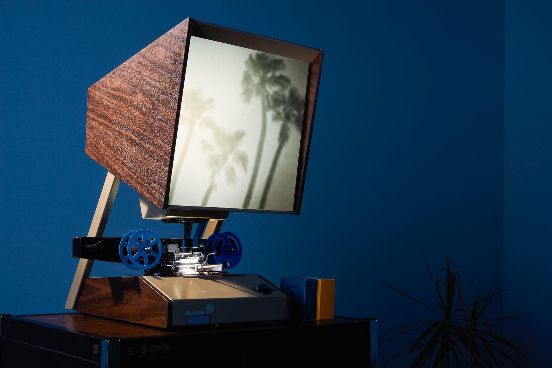 Film Palm Trees Flattenedv02.jpg