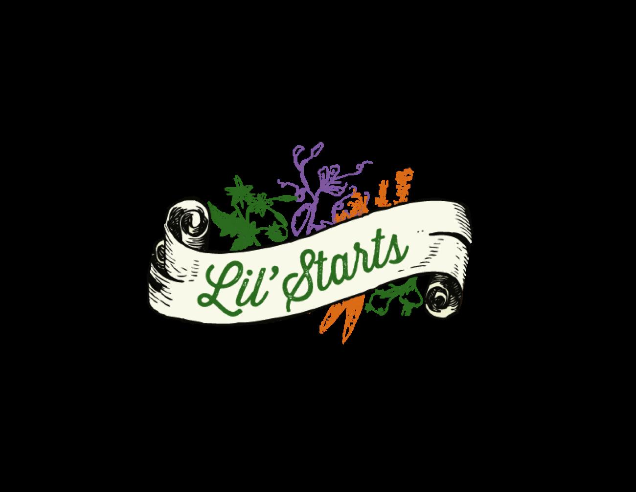 Lil Starts Logo.png