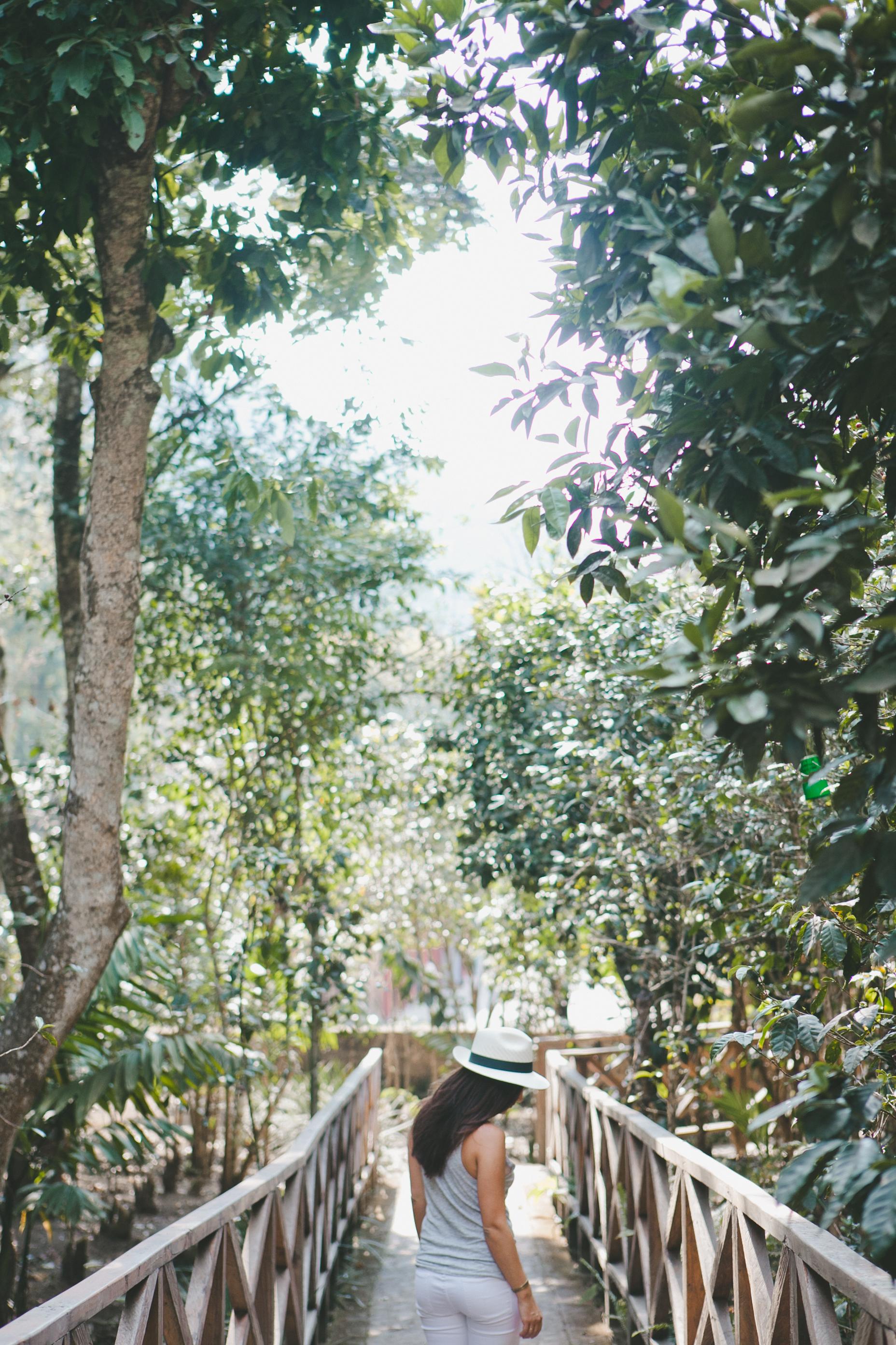 sarahshreves.com-7616.jpg
