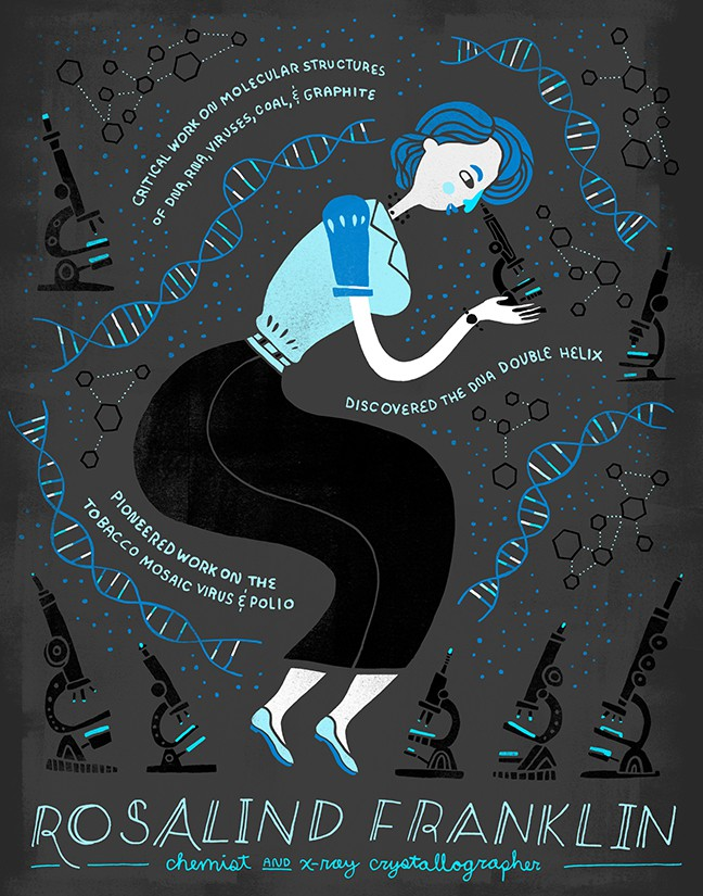 Illustration courtesy of   Rachel Ignotofsky  . Check her out on   Etsy  .
