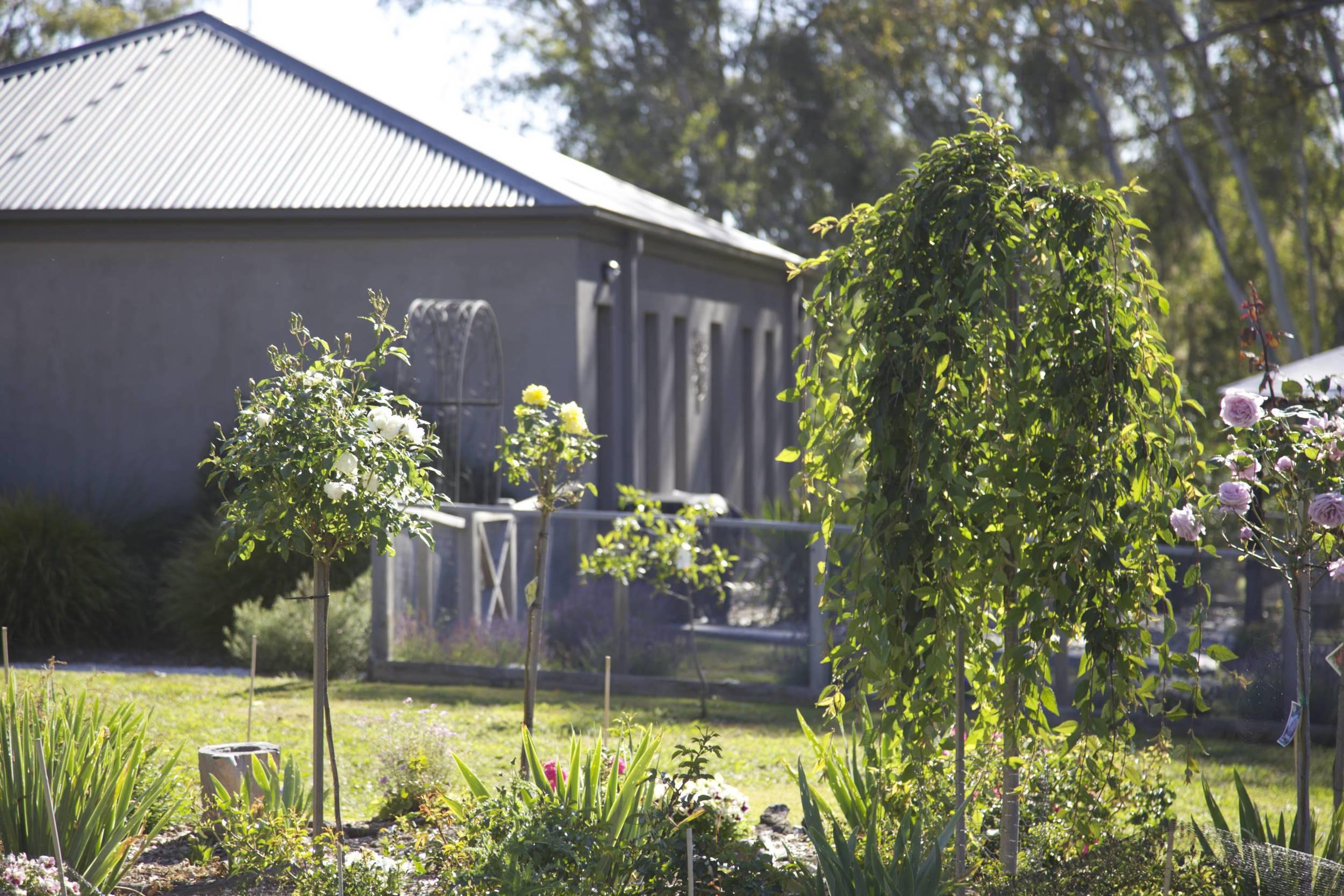 Studio from garden