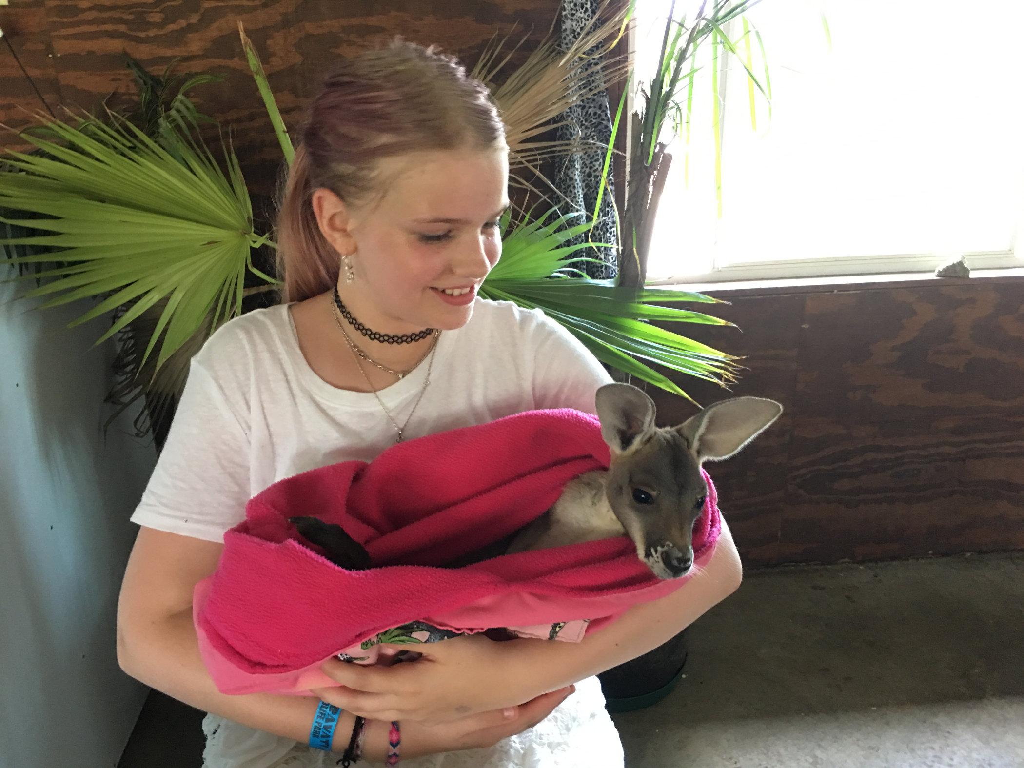 baby kangaroo1.jpg