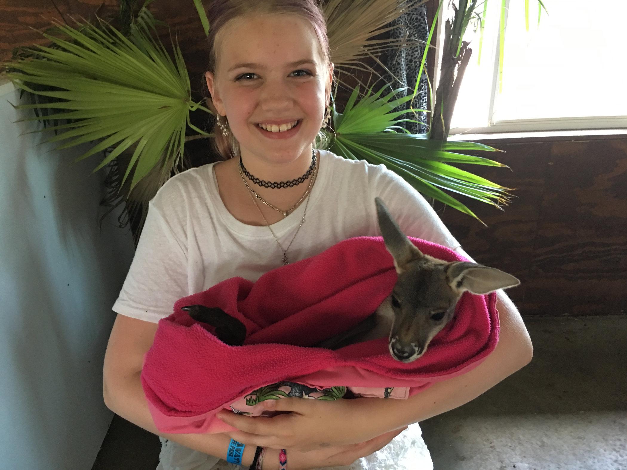 baby kangaroo2.jpg