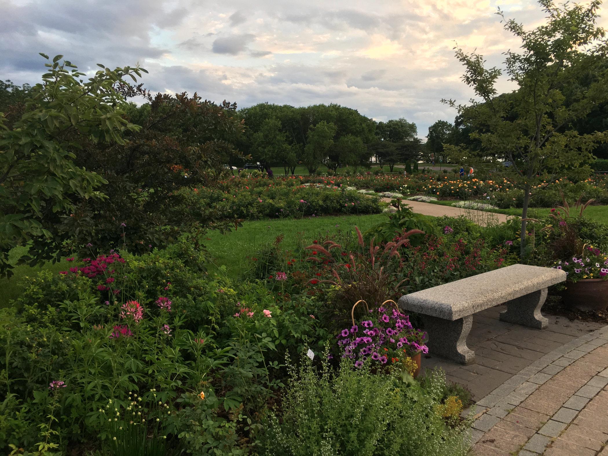 rose-gardens.jpg