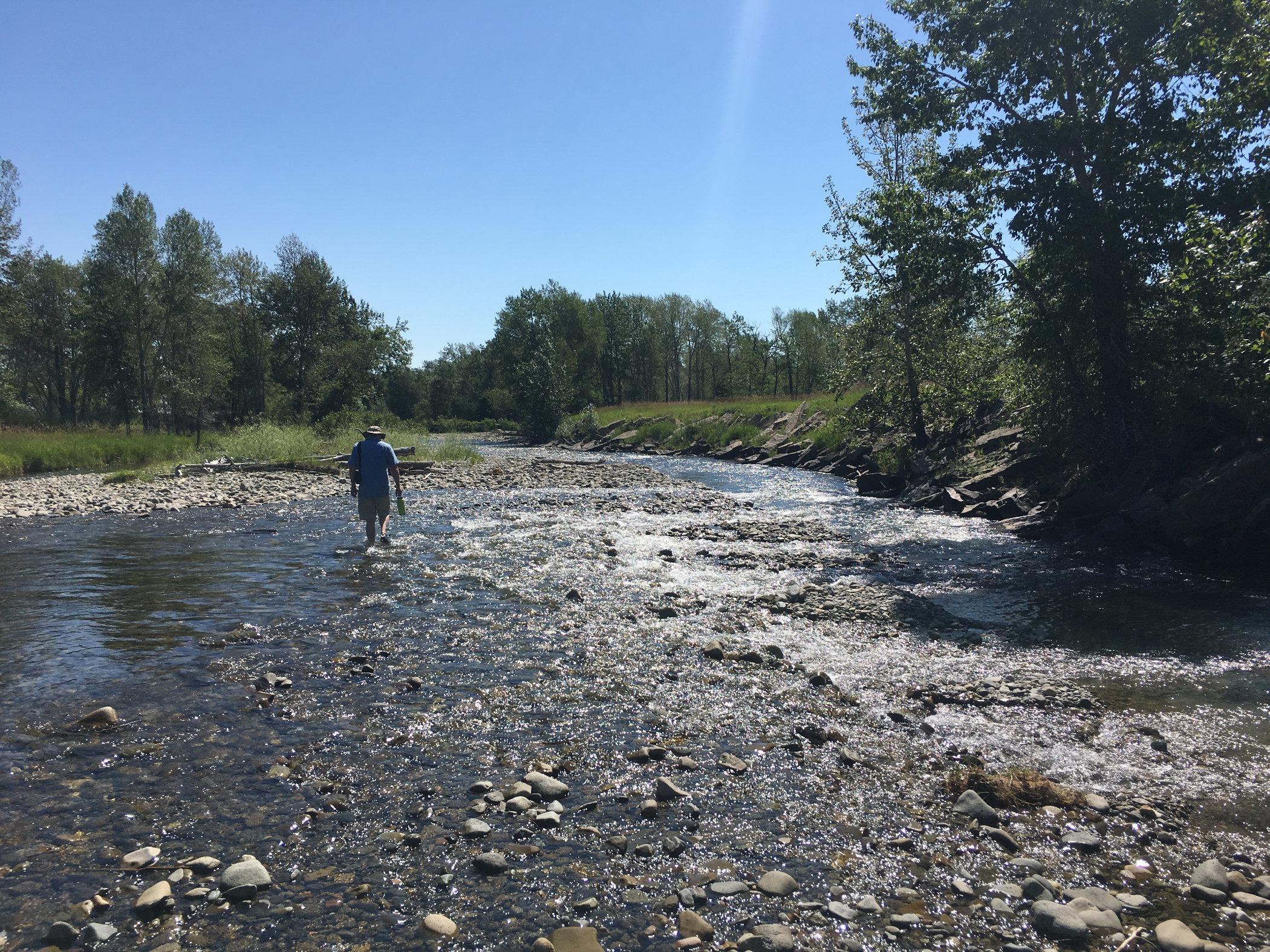 creek-hike.jpg