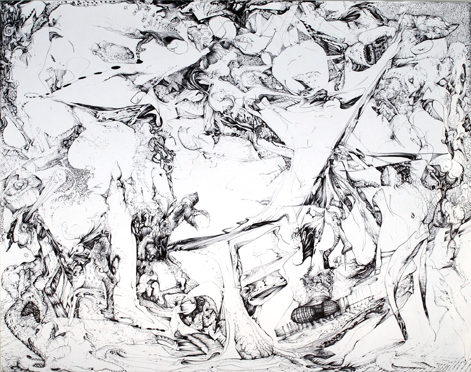 angusgalloway-findingsno1-pen-on-paper14inx17in.png