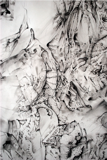 angusgalloway-findingsno4detail-pen-on-paper-48inx44in.png