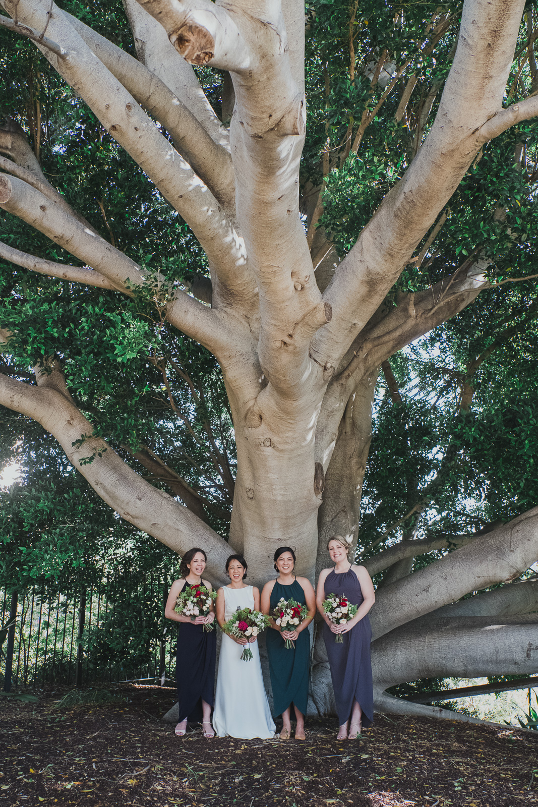 Pyrmont-park-bride-and-groom-portraits (12).jpg