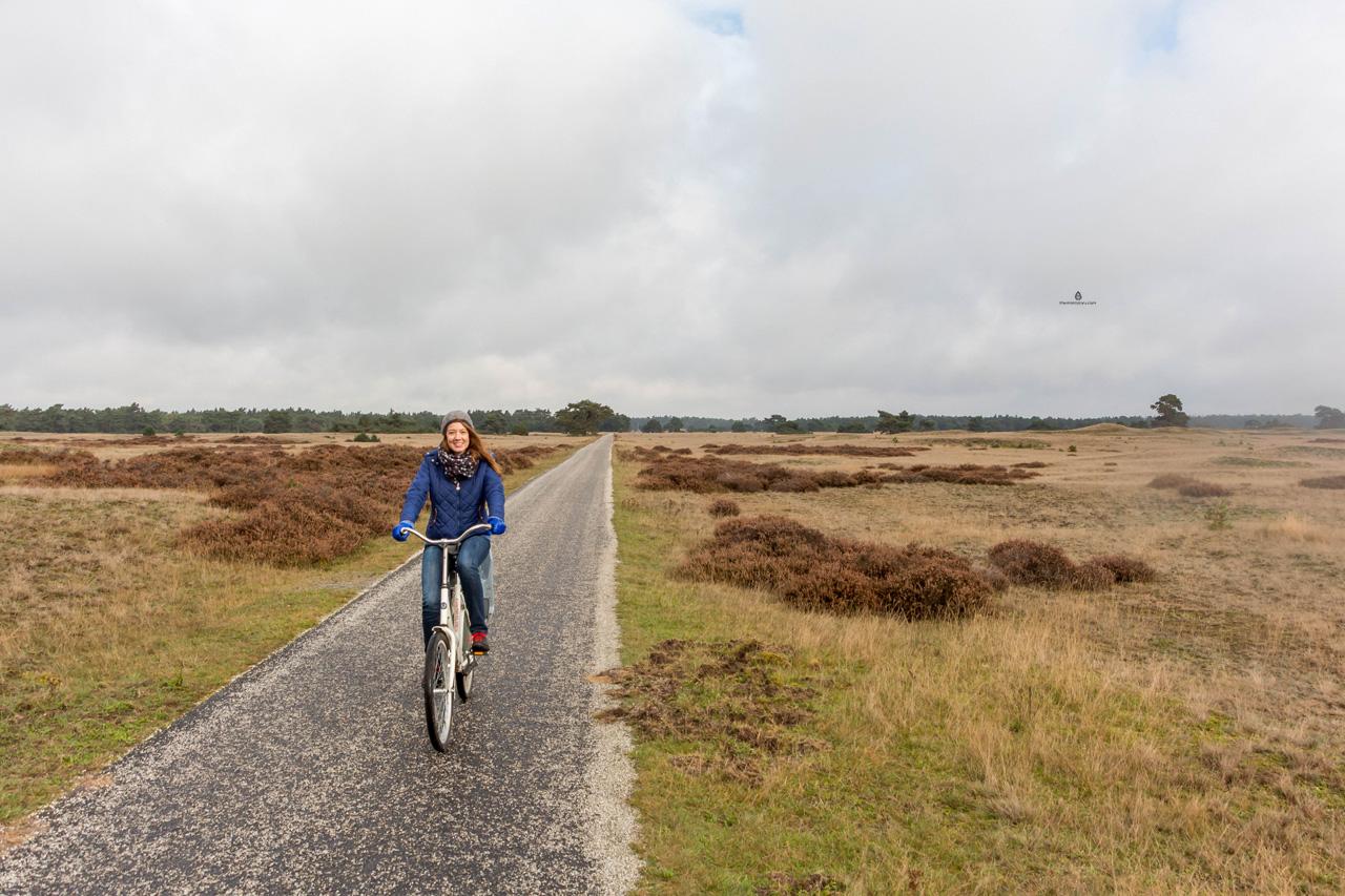 De-Hoge-Veluwe