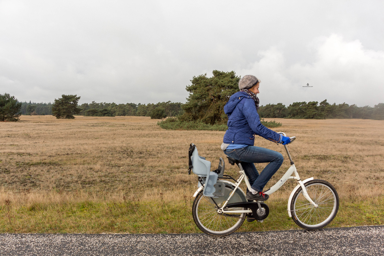 De-Hoge-Veluwe-white-bikes