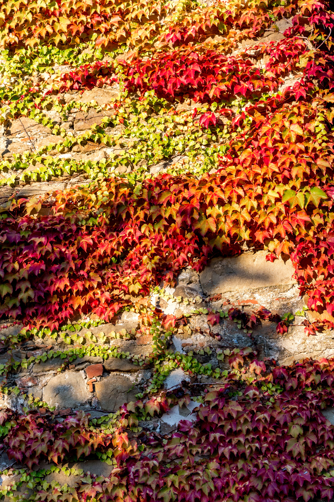 Autumn escape to Umbria, Italy