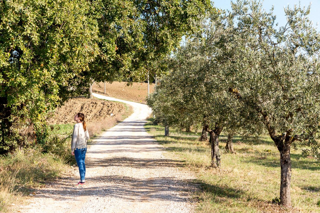 Around Todi, Umbria