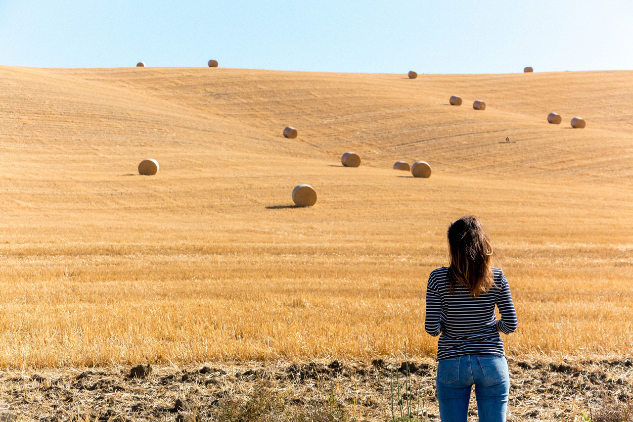 In Tuscany: Val d'Orcia