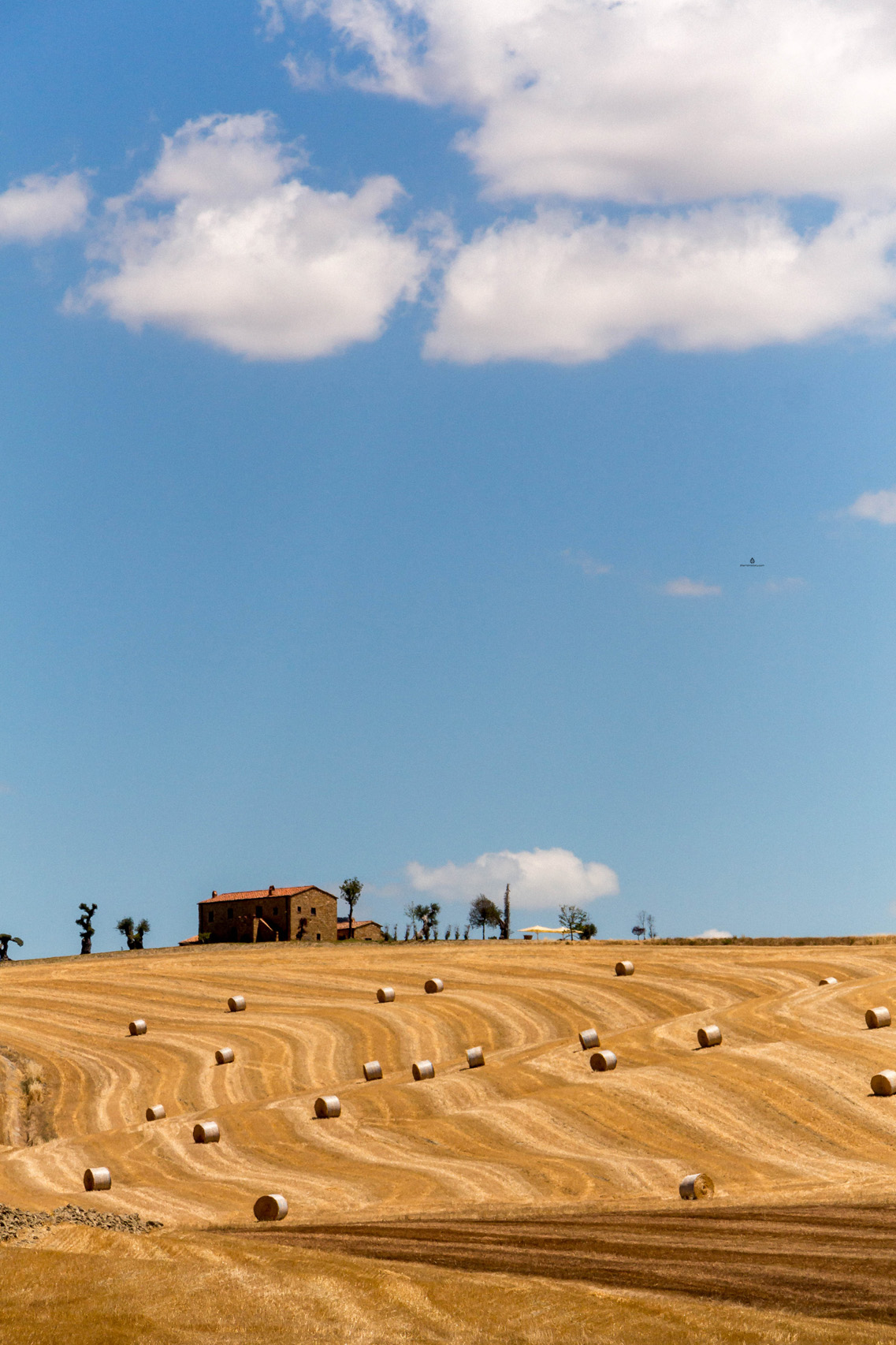 Landscape around Pienza, Tuscany