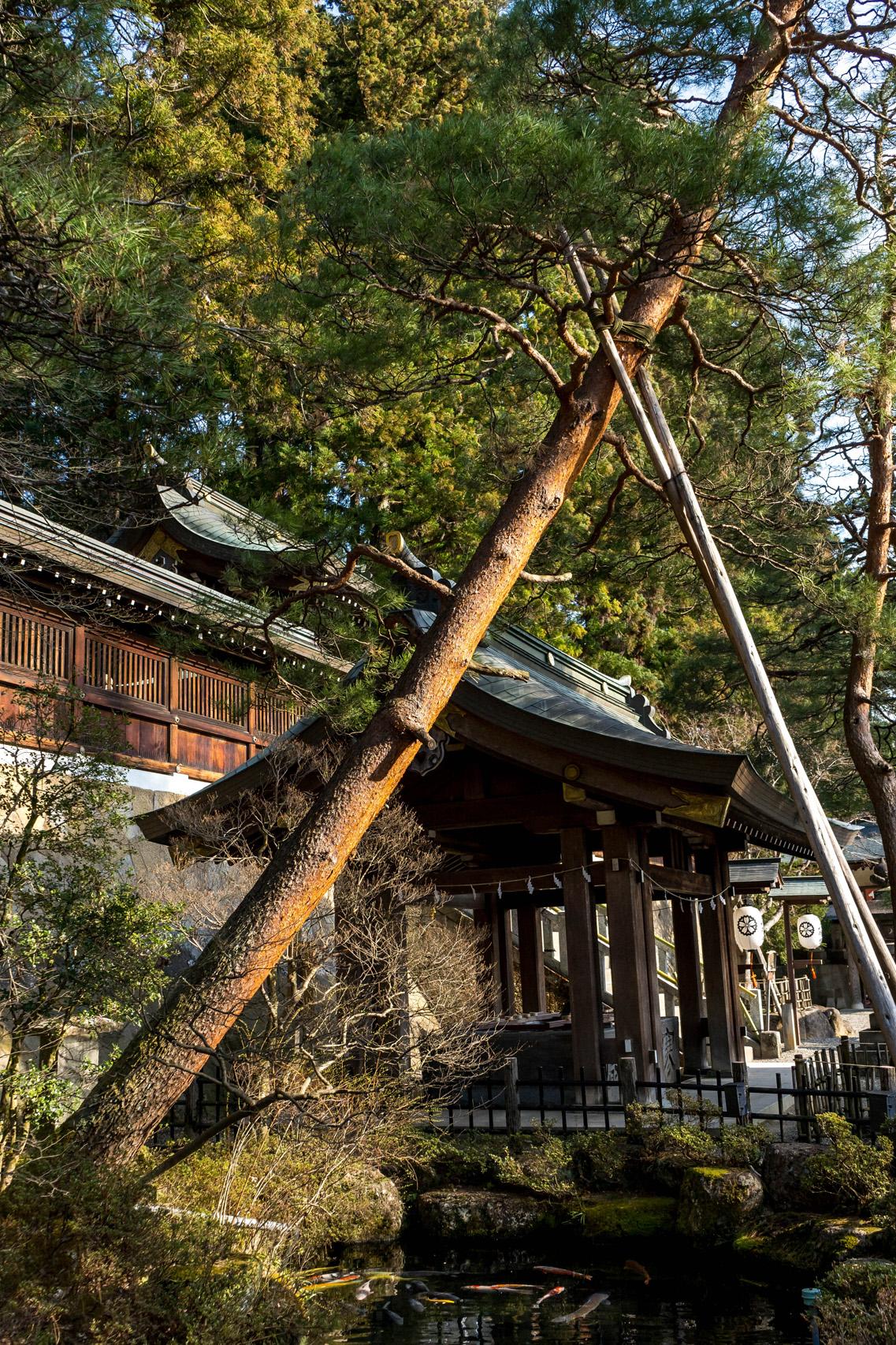 Takayama, Sakurayama Hachimangu shrine