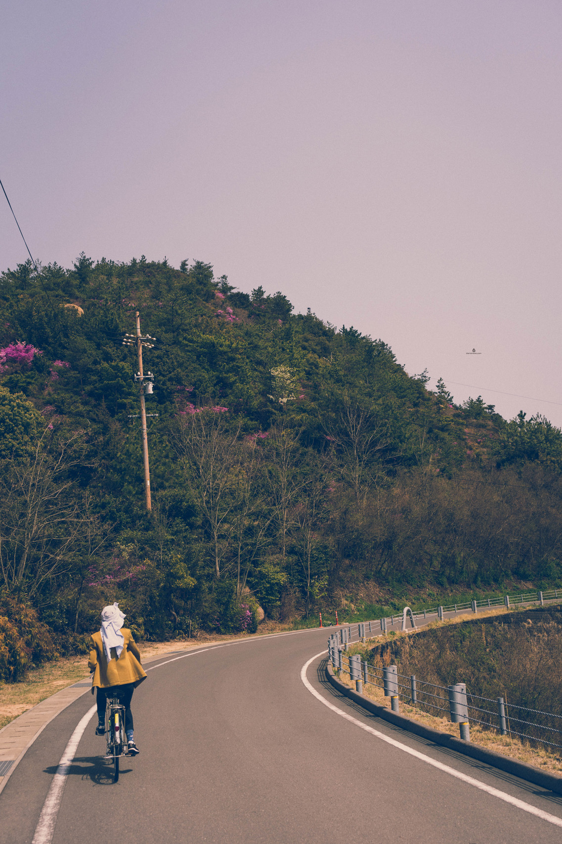 On the road in Naoshima