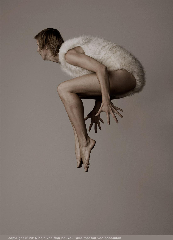 flyingbirds-aletpilon-studiofotografie-kunst3.jpg