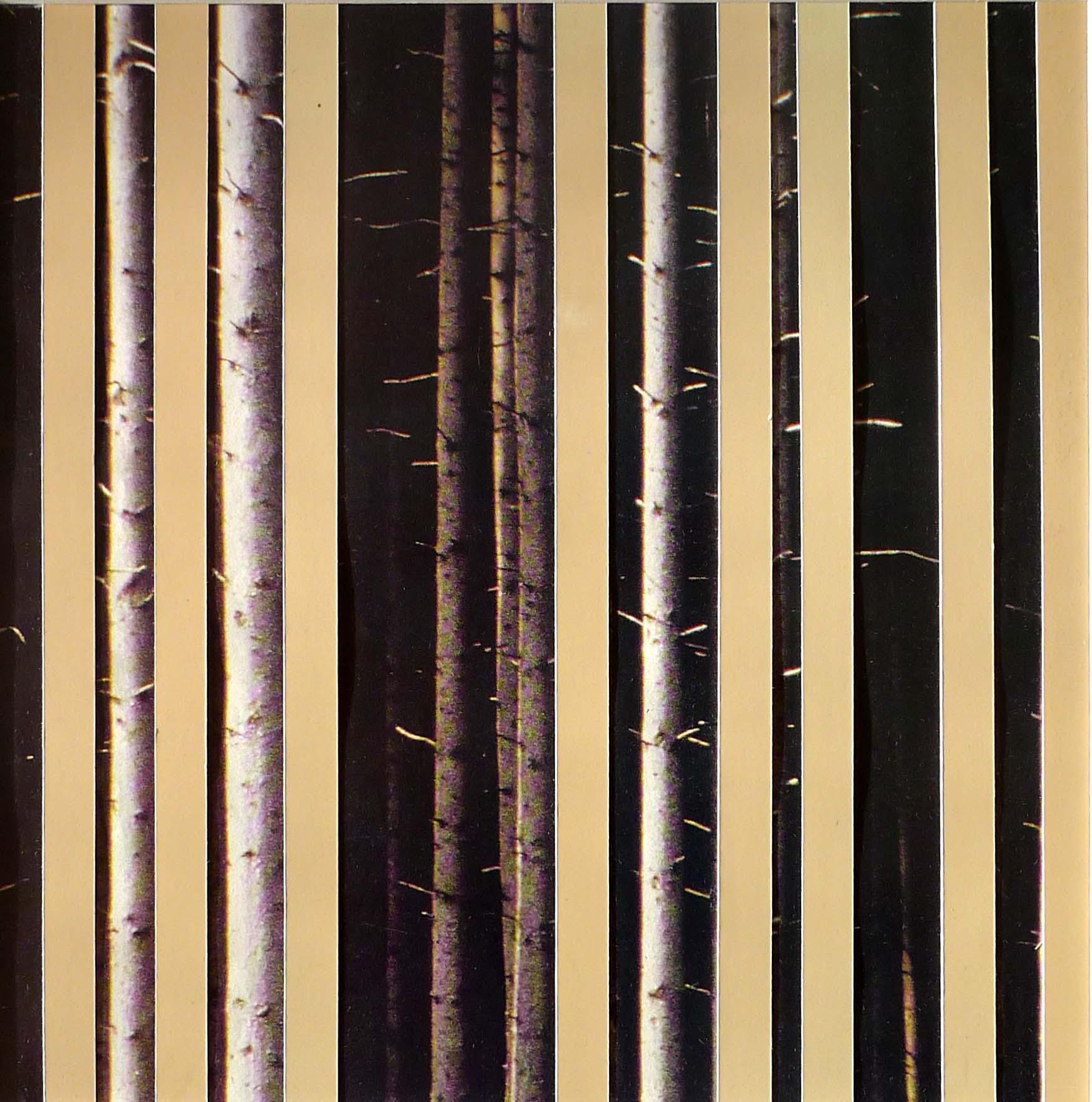 Berken, 2012 (20,5cm x 20,5cm)