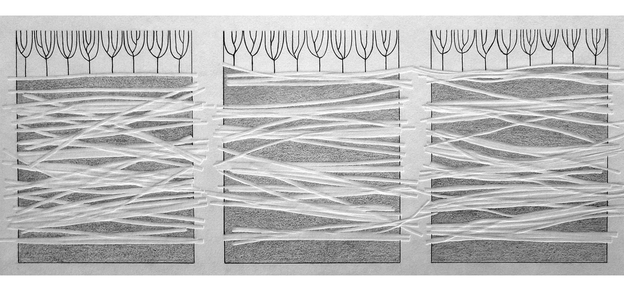 Vlasakker IV, 2014  (blinddruk, potlood) 25cm x 55cm