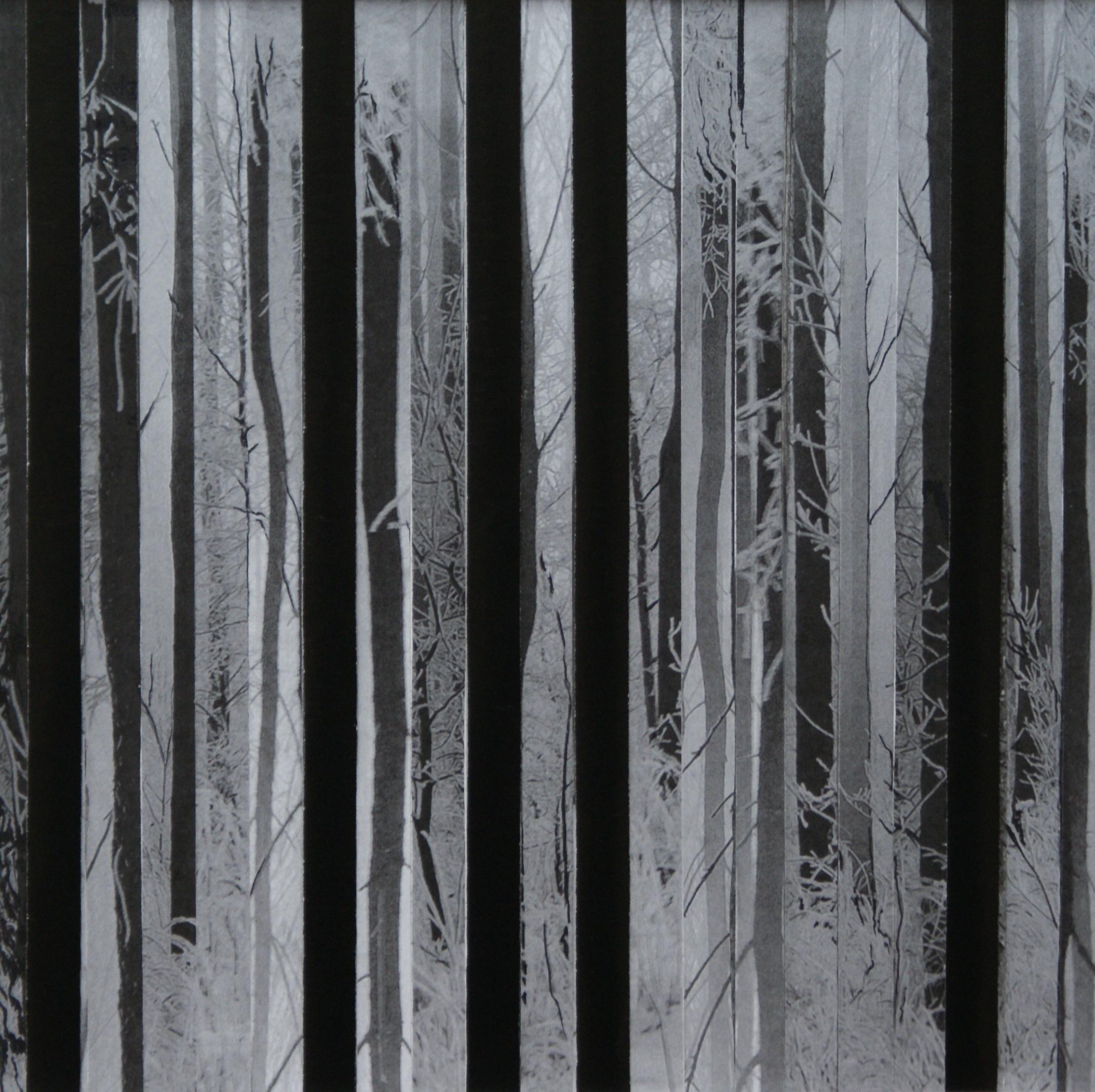 Bos II,  2017  (20,5 cm x 20,5 cm)