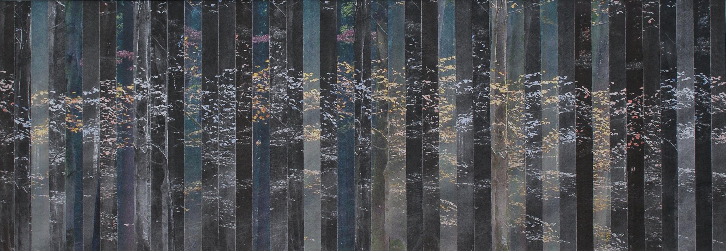 Bosrand IV,  2017  (15 cm x 43 cm)