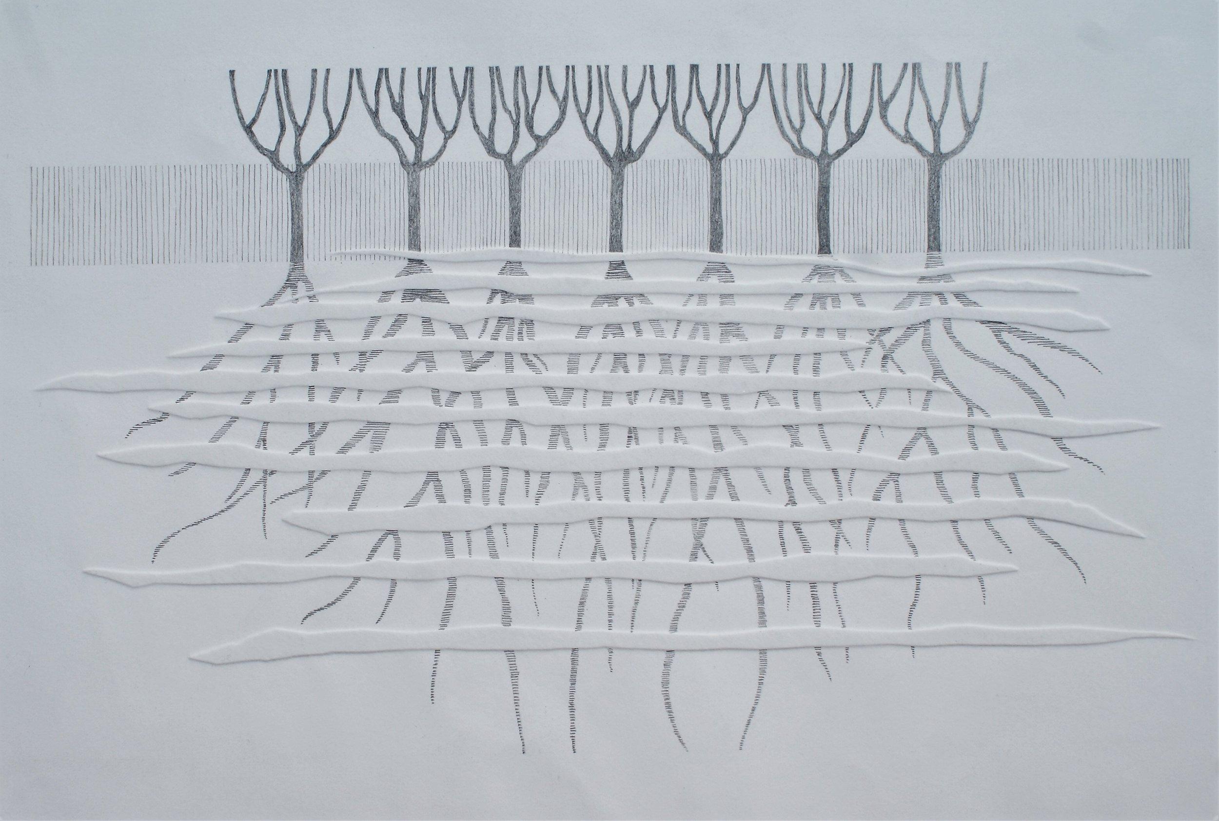 Boomwortels II, 2018 (blinddruk, potlood) 60 cm x 43,5 cm