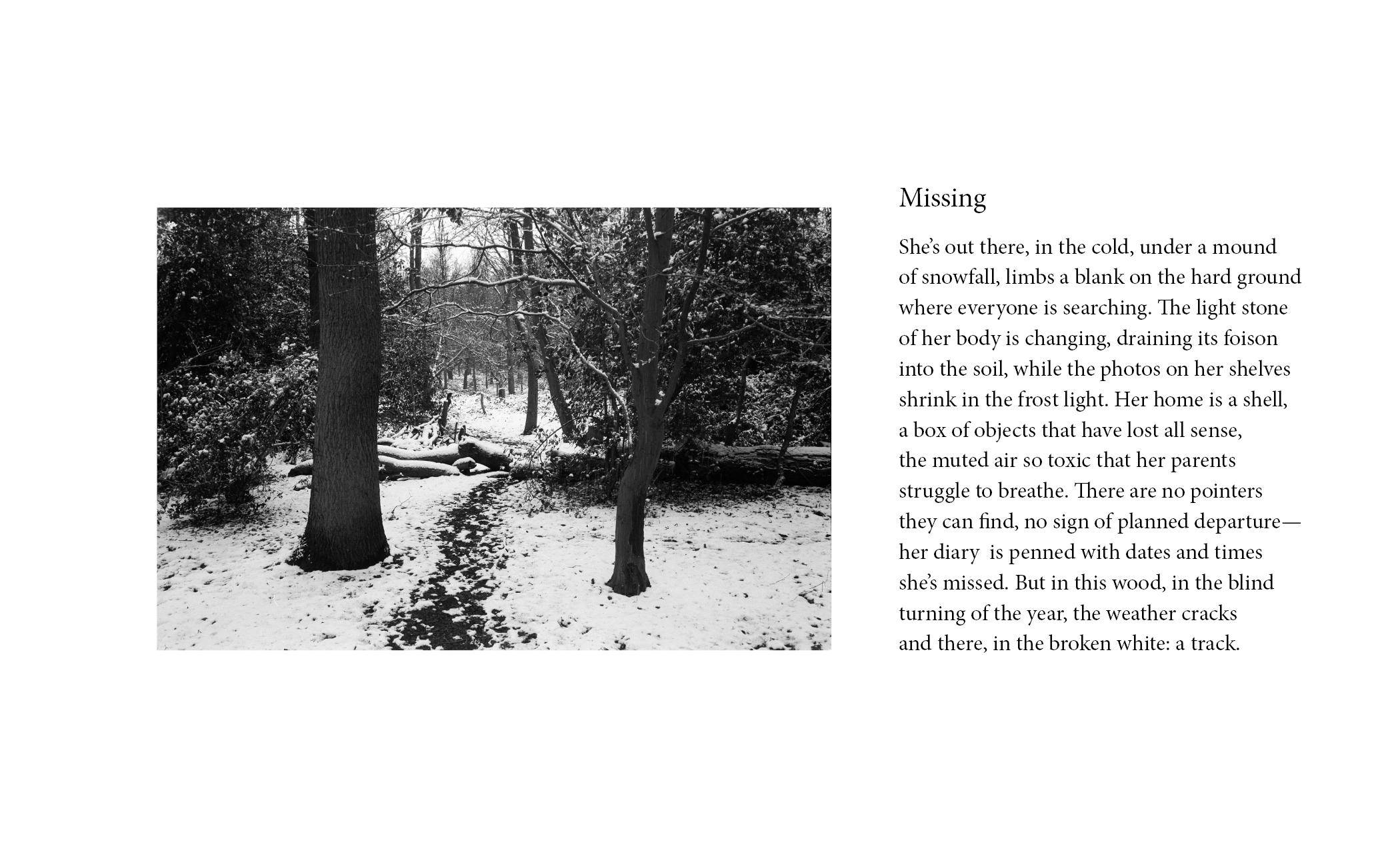 (5) Missing.jpg