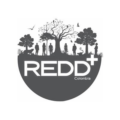 REDD+.jpg