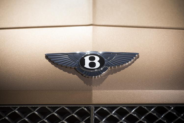 bentley-continental-GT-detail-logo.JPG