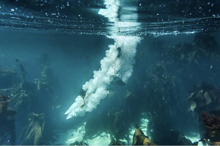 Underwater-Photography-Naude-Heunis_02.jpg