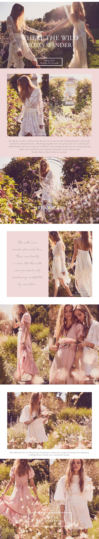 wild-roses-blog.jpg