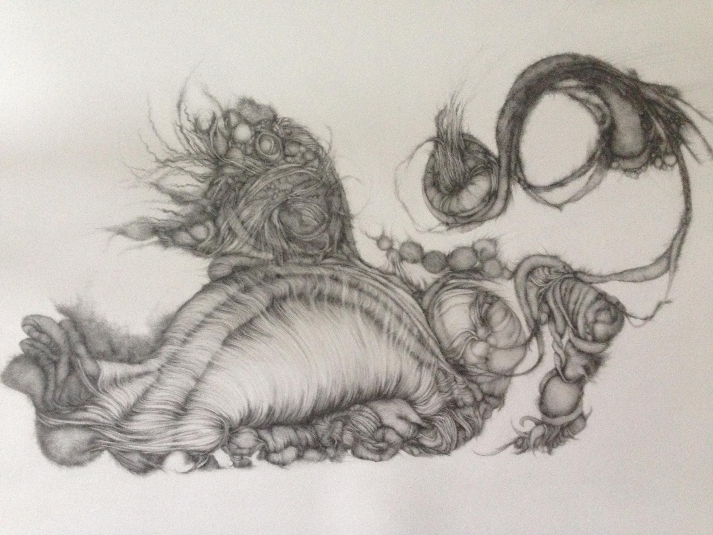"Roar, 2014, graphite on Arches paper, 22"" x 30"""