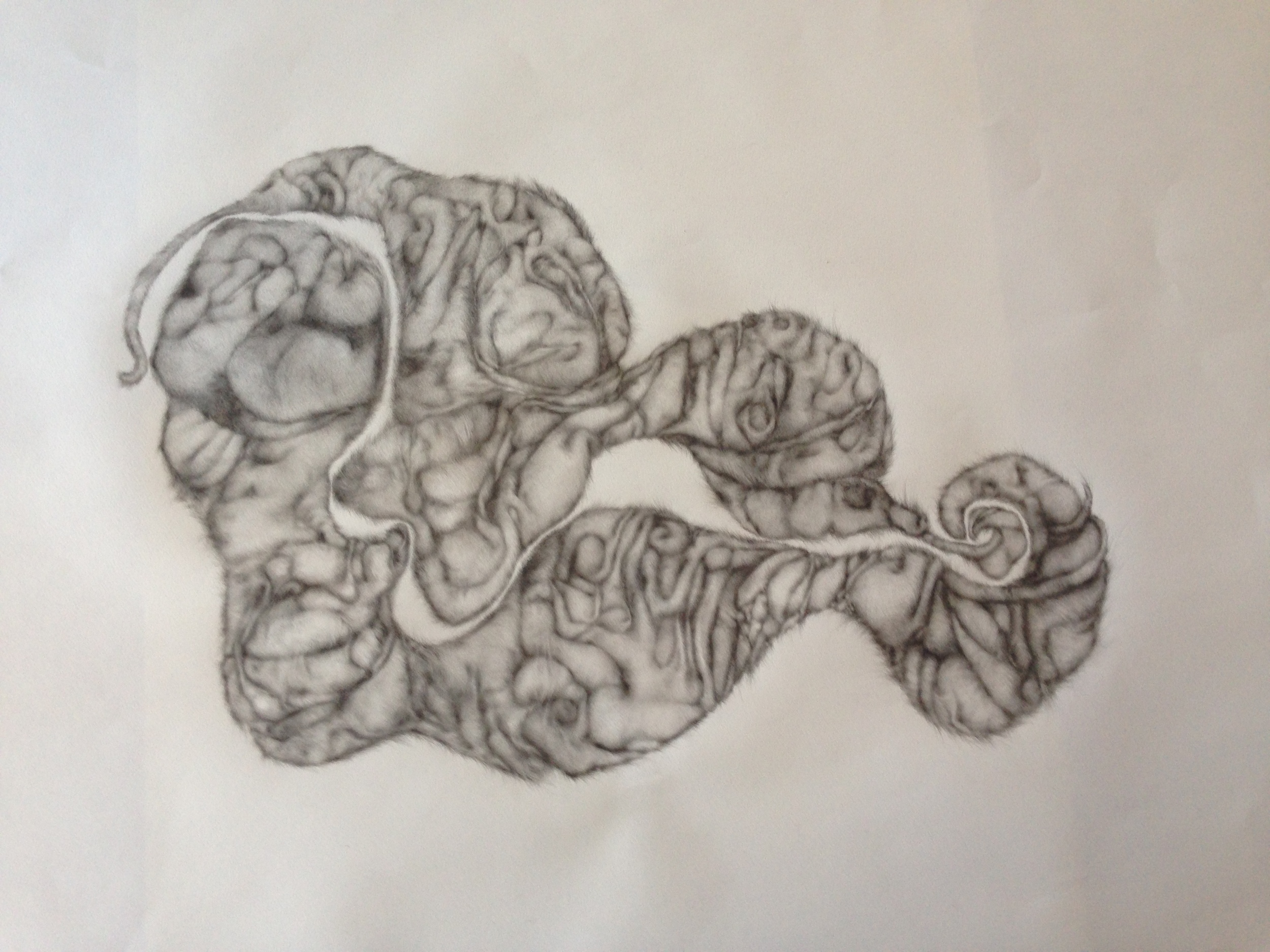 "Bodies in Motion, 2013, graphite on paper, 26"" x 40"""
